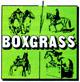 Boxgrass